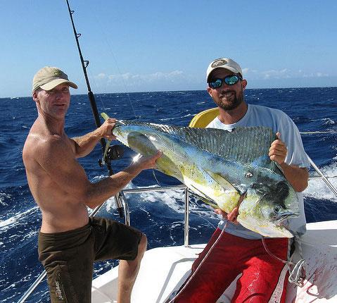 巨人鲯鳅鱼渔获巴哈马